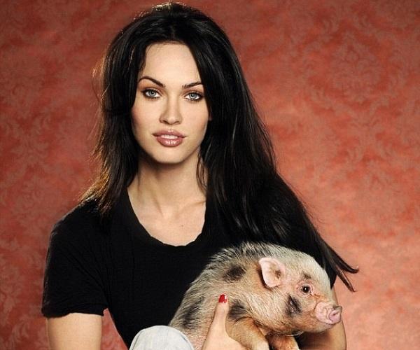 Megan-Fox-pets